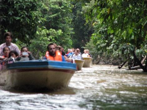 Borneo, 2012 344