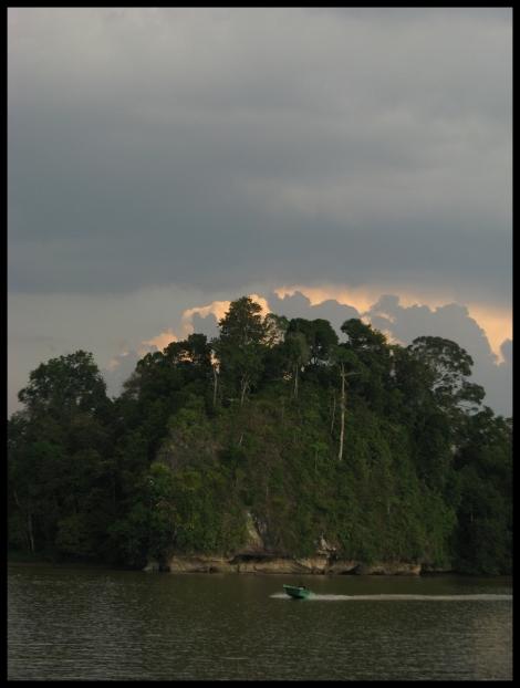 Borneo, 2012 455.1.
