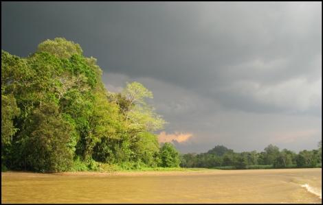 Borneo, 2012 466.1.