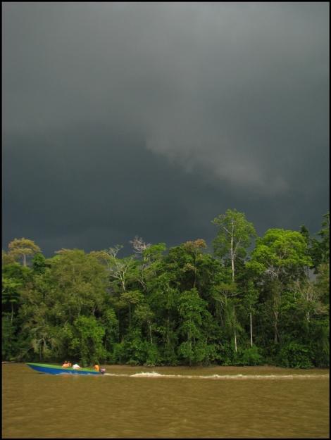 Borneo, 2012 467.1.