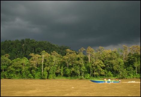 Borneo, 2012 473.1.