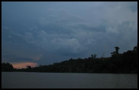 Borneo, 2012 623.1.