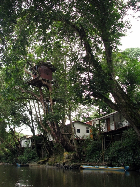 a small tree-house