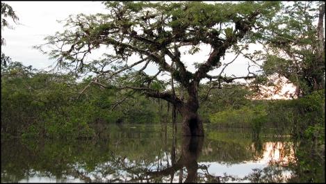 Ecuador, 2008 035